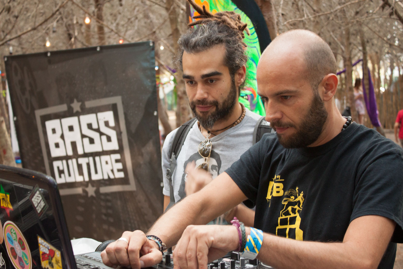 Bass-Culture-Earth-Garden-2014-01