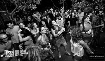 Bass-Culture-Panda-Dub-2014-10
